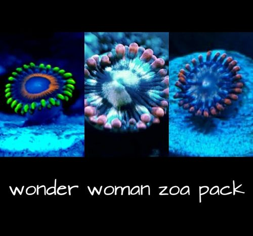 wonder woman zoa pack