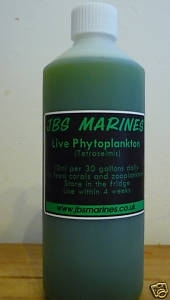 500ml bottle of live Tetraselmis phytoplankton live food