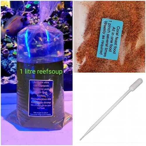 1 litre REEF SOUP COPEPODS LIVE MARINE FOOD REFILL BAG PLUS CORAL FEAST  FREE POSTAGE