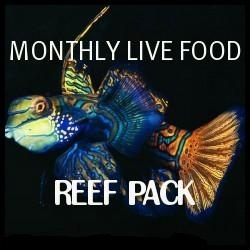 refill pouches 2 x montly subsription of 100ml copepods and 100ml  plankton live food