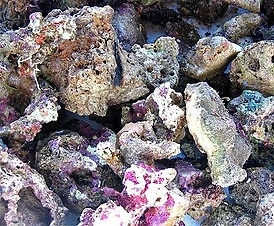 1000g of live rock rubble for filter systems or refugium